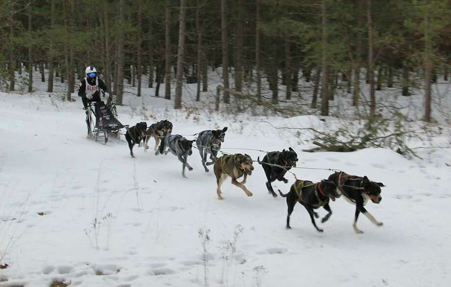 Abigaile Fox, of East Greenville, Pennsylvania, is pictured driving her team of sled dogs in the race in Sweetwater Township. (Courtesy photo)