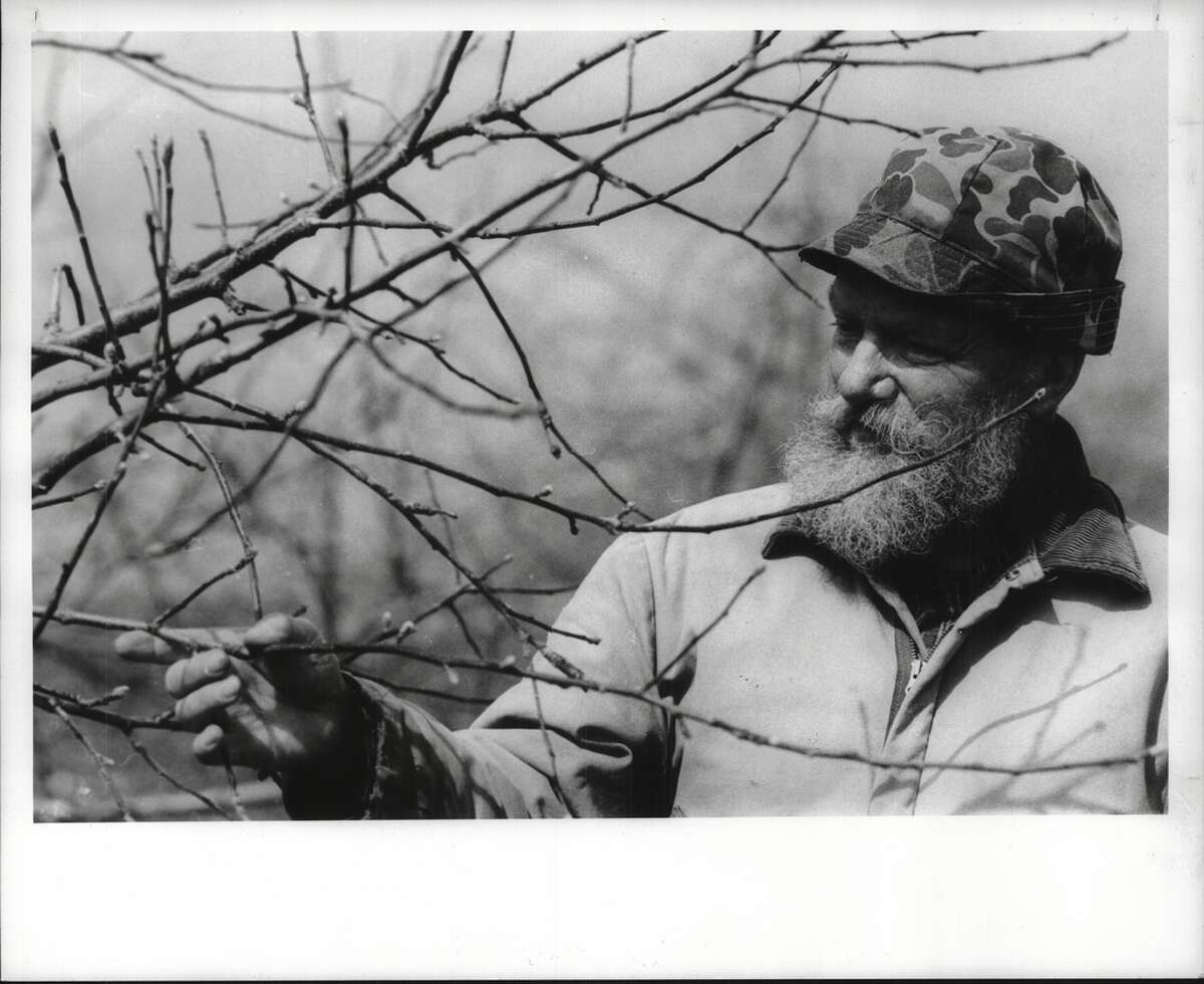March 22, 1990: Sid Mead shows off apple tree buds at Mead Orchards in Tivoli, New York.While the landscape, traffic patterns, fashions and hairstyles may have changed dramatically throughout the region over the course of 30 years, when the weather turns milder and the trees begin to bud, the feeling in the air remains the same.