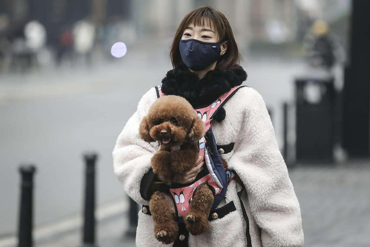 Walk dogs on a leash, maintaining at least 6 feet (2 meters) from other people and animals. Source: CDC