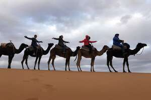 Members of a travel group on a camel ride in the Sahara Desert. (Provided)