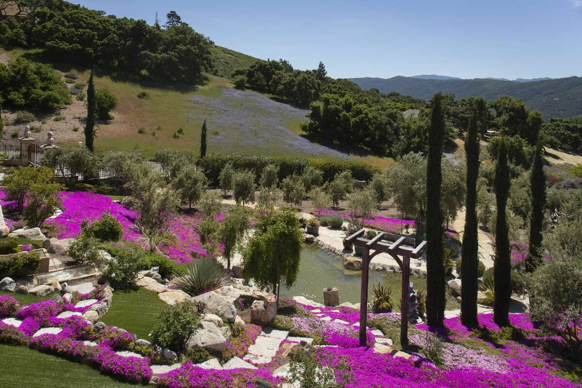 On 2.5 acres in Carmel Valley, Villa Oliva is an olive-oil producing estate asking $4.3M