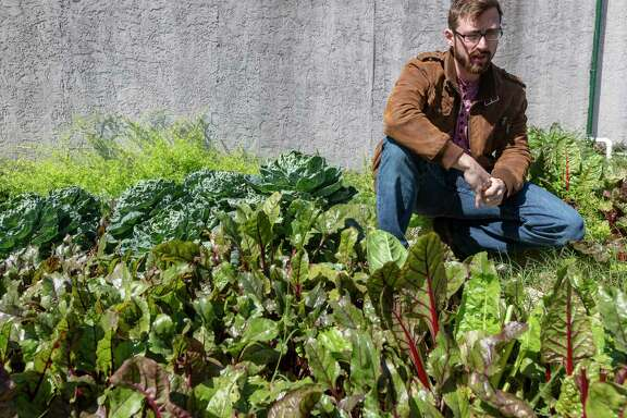 Entrepreneur Mitch Hagney is seen with some of the root vegetables he's growing at his Local Sprouts Food Hub warehouse on the near East Side.