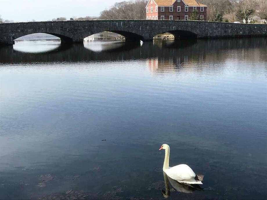 Gorham's Pond Photo: /