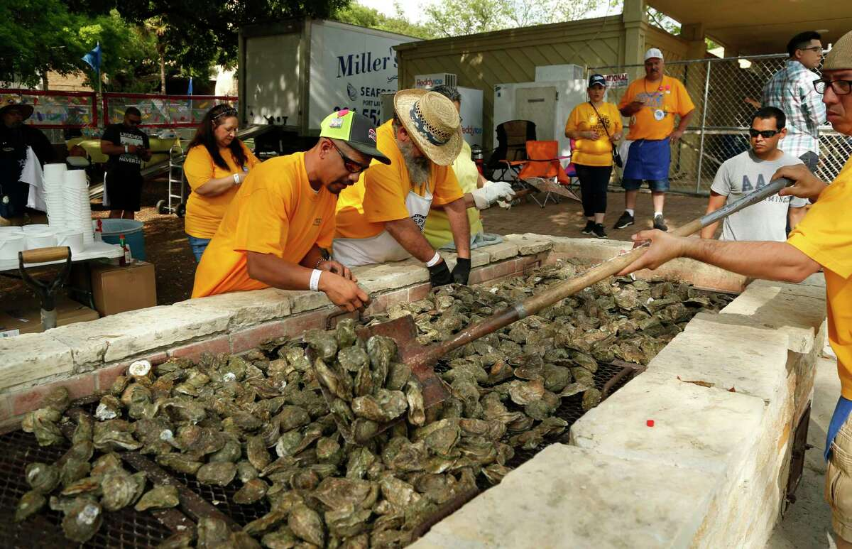Volunteers prepare oysters during the 2019 Fiesta Oyster Bake. Attendees consume about 100,000 of the bivalves during the two-day event