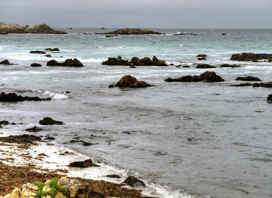 Asilomar State Beach fronts Monterey Bay, 120 miles south of San Francisco. Photo: Apollob66/Getty Images/iStockphoto