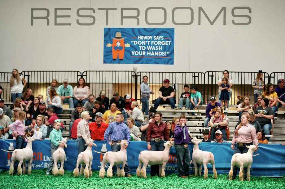Students continue to show sheep at the Houston Livestock Show and Rodeo, Wednesday, March 11, 2020, at NRG Center in Houston. Officials announced the rodeo will be closing at 4pm on Wednesday. Photo: Mark Mulligan, Houston Chronicle / Staff Photographer / 2020
