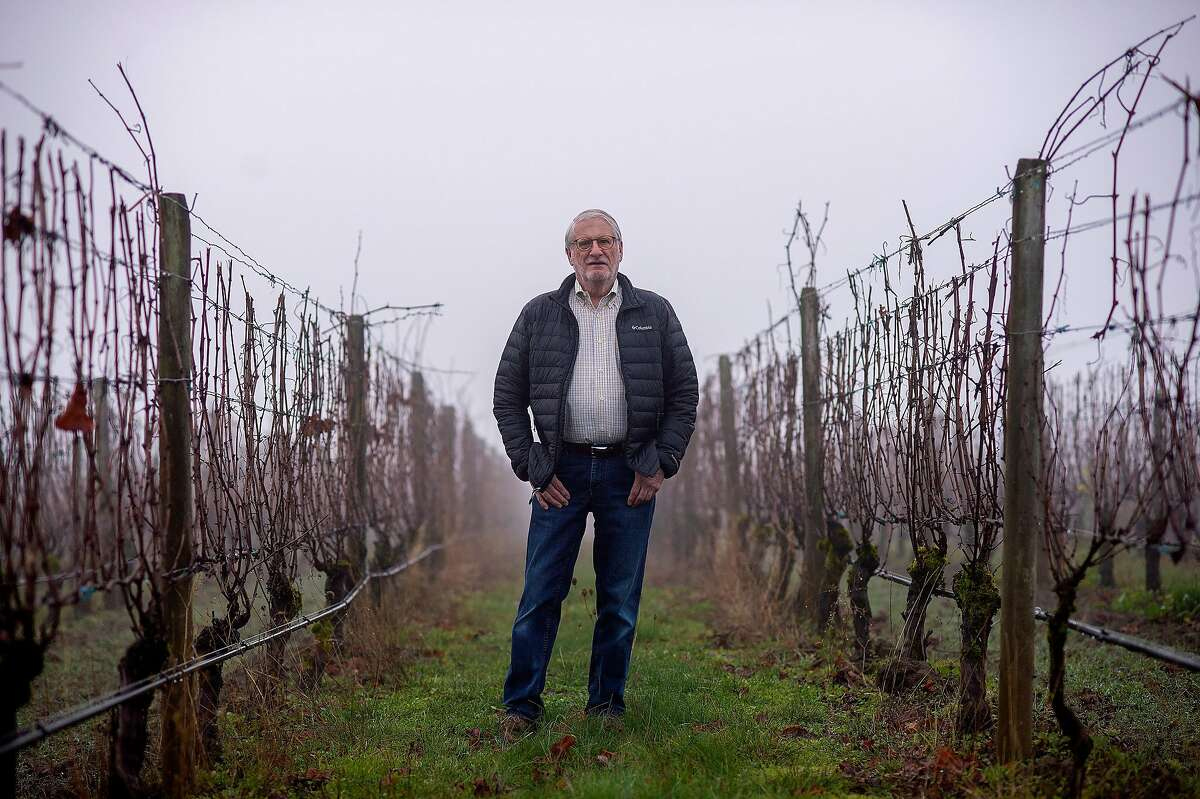 David Adelsheim poses for a portrait at the Adelsheim Winery on Monday, November 25, 2019 in Newberg, Ore.