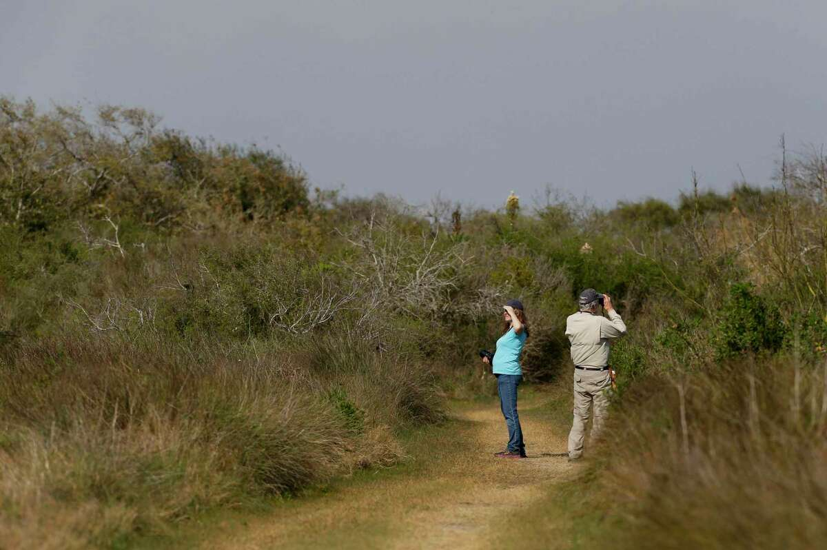 Visitors look for birds while walking through a trail at the Aransas National Wildlife Refuge in Rockport, Texas.