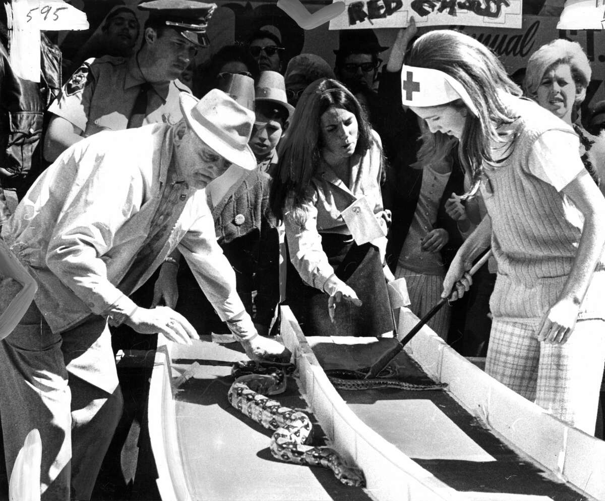 """Anthony Broom with """"St. Patrick's Pride"""" and Sue Riddell with """"St. Paul"""" in a snake race. St. Patrick's Day San Francisco. March 17, 1970"""