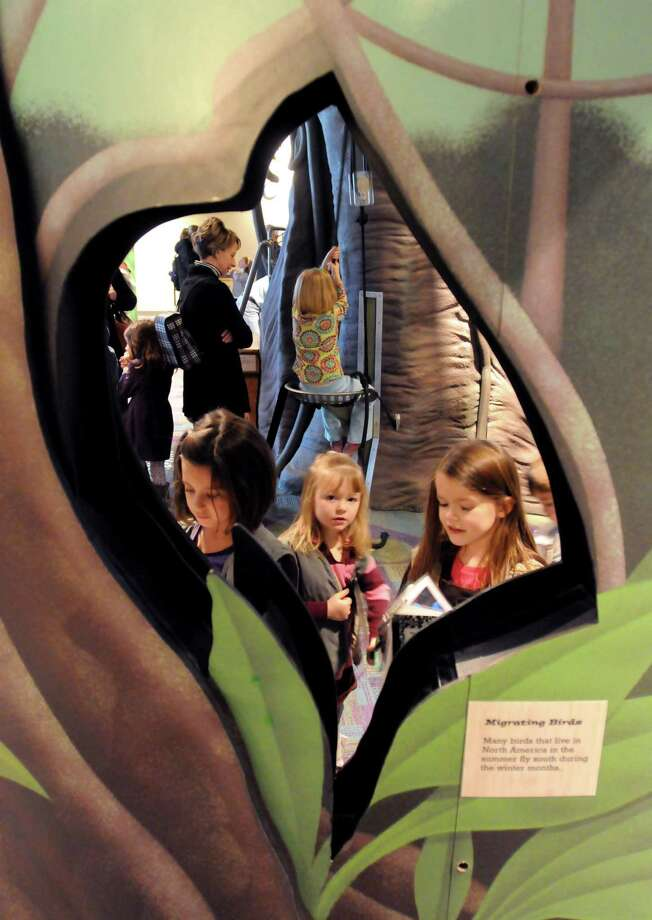 Stepping Stones Museum in Norwalk underwent a recent renovation. There are lots of openings to see or walk through in the Rainforest Adventure. Photo by Mara Lavitt/New Haven Register 12/2/10