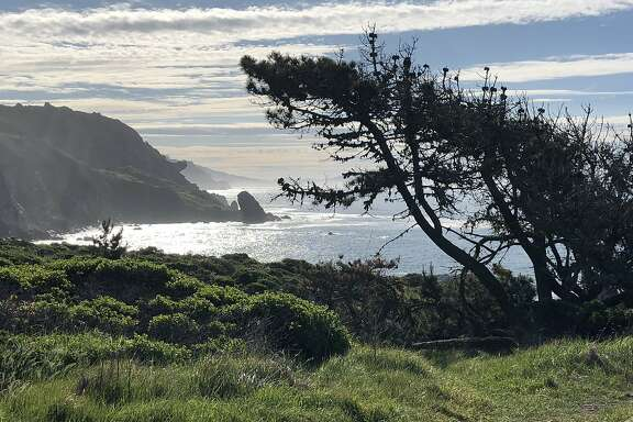 View from the Steep Ravine Environmental campground at Mt. Tamalpais state park in Marin.
