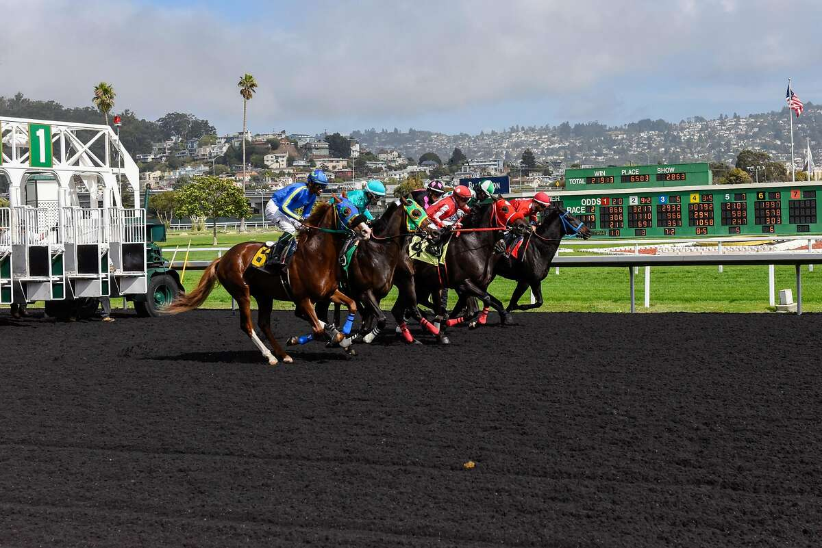 Horse racing at Golden Gate Fields on October 18, 2019 in Albany, Calif.