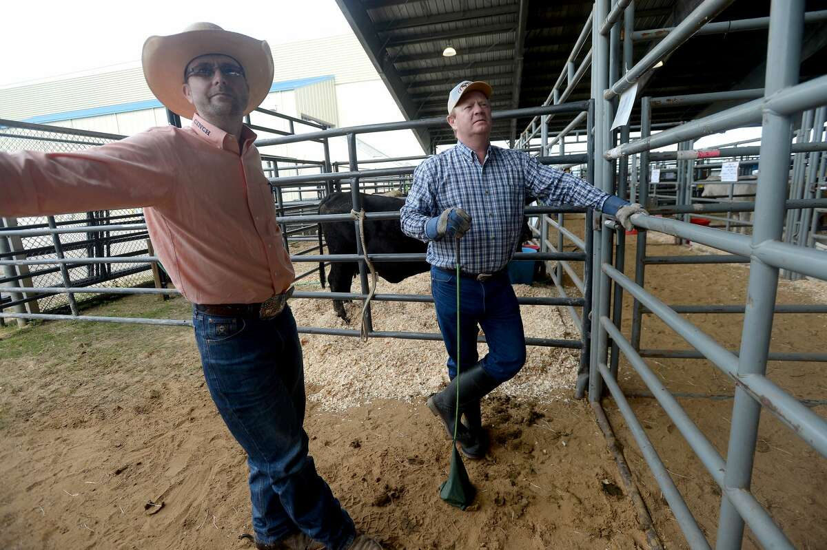 Kenneth Jenkins (left) and cattleman Larry Shane of Gonzales watch as Shane's bulls are herded to their pen as livestock are unloaded for the YMBL South Texas State Fair, which was canceled later in the day. Photo taken Friday, March 13, 2020 Kim Brent/The Enterprise