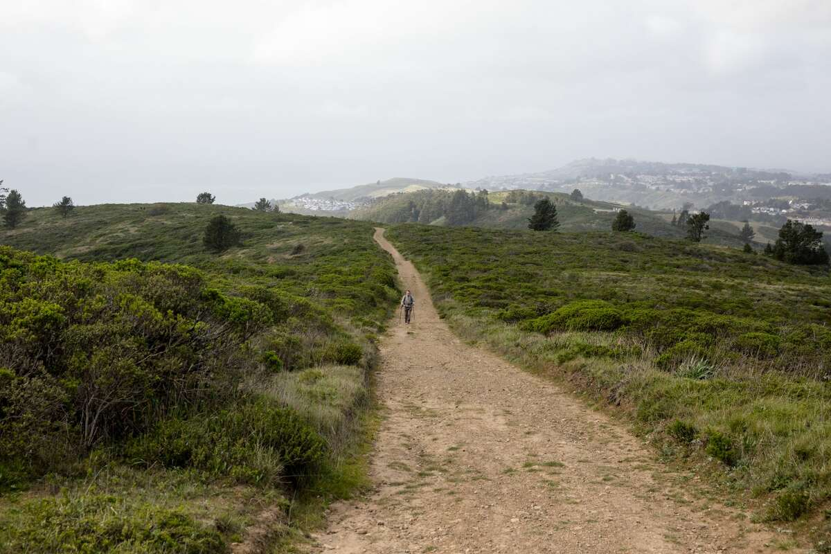 The Sweeney Ridge hike includes some steep climbs and remarkable views on the way to the San Francisco Bay Discovery Site. The site is where the Portola expedition discovered San Francisco Bay.