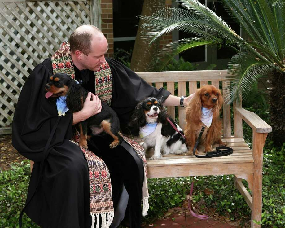 """Bellaire United Methodist Church has canceled its annual """"Blessing of the Animals,"""" scheduled for Saturday, March 28. Photo: Bellaire United Methodist Church / Bellaire United Methodist Church"""