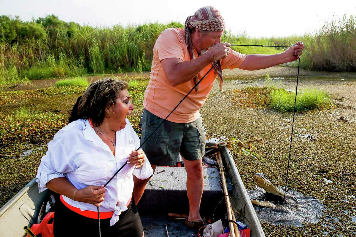 Nancy Halliburton-Sample, left, and her husband, Mike Sample, react after seeing the alligator on their line surface during an alligator hunt at the J. D. Murphree Wildlife Management Area Tuesday, Sept. 20, 2016 in Port Arthur.