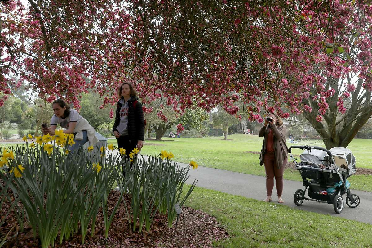 Paige Hillstron (left) from San Francisco and her friend Anita Wybraniec (middle) from Los Angeles view flowers in the Mediterranean garden at SF Botanical Gardens on Friday, March 13, 2020, in San Francisco, Calif.