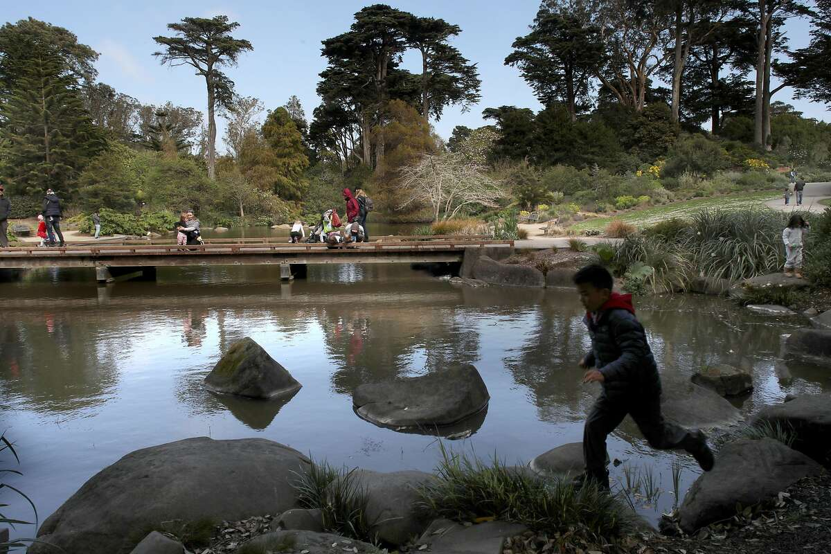 The Waterfowl Pond at the SF Botanical Gardens seen on Friday, March 13, 2020, in San Francisco, Calif.
