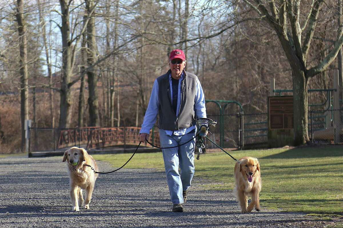 Michael Sherman takes Bo, left, and Harry for a walk in Merwin Meadows Park.