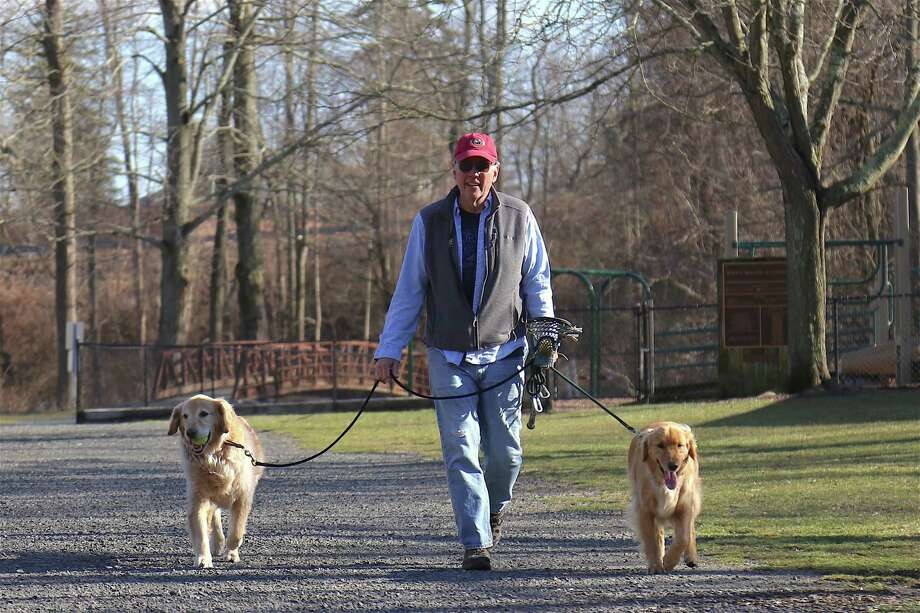 Michael Sherman takes Bo, left, and Harry for a walk in Merwin Meadows Park. Photo: Jarret Liotta / Hearst Connecticut Media / Wilton Bulletin
