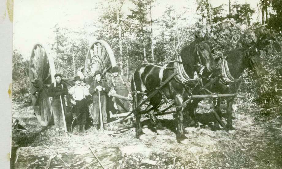 This group of lumberjacks remove a group of logs from the Manistee forest in the 1890s using the Silas Overpack Wheels that were built in Manistee.
