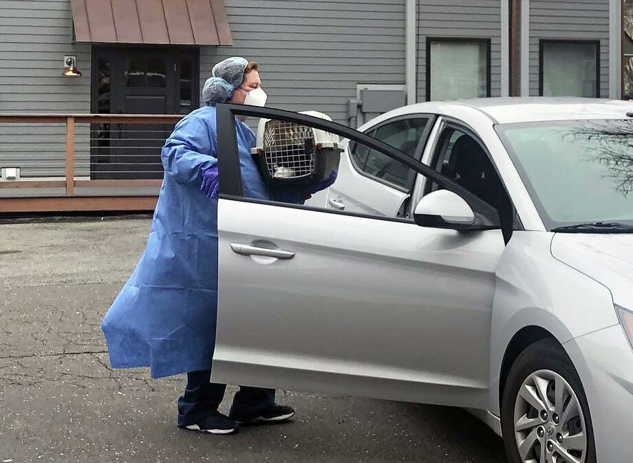Staff from Animal Clinic of Milford meet a client outside to take their pet inside to be cared for at the clinic. Clients are not being allowed in the building to lessen potential coronavirus exposure. Photo: Contributed Photo / Animal Clinic Of Milford