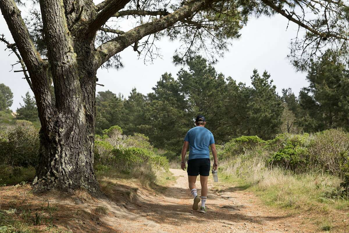The Sweeney Ridge hike includes steep climbs, coastal forests and great views on the way to the S.F. Bay Discovery Site.