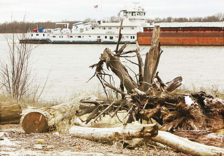As if the area didn't have enough to deal with during the COVID-19 pandemic, flooding is now expected on the Mississippi and Illinois Rivers next week. On Friday, a towboat pushing upstream passes piles of river debris — including logs and stumps — left from last year's historic flooding.