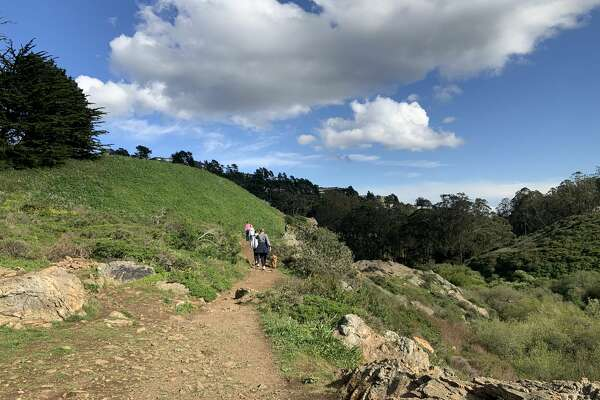 A clear, sunny day in San Francisco's Glen Park Canyon, March 16, 2020