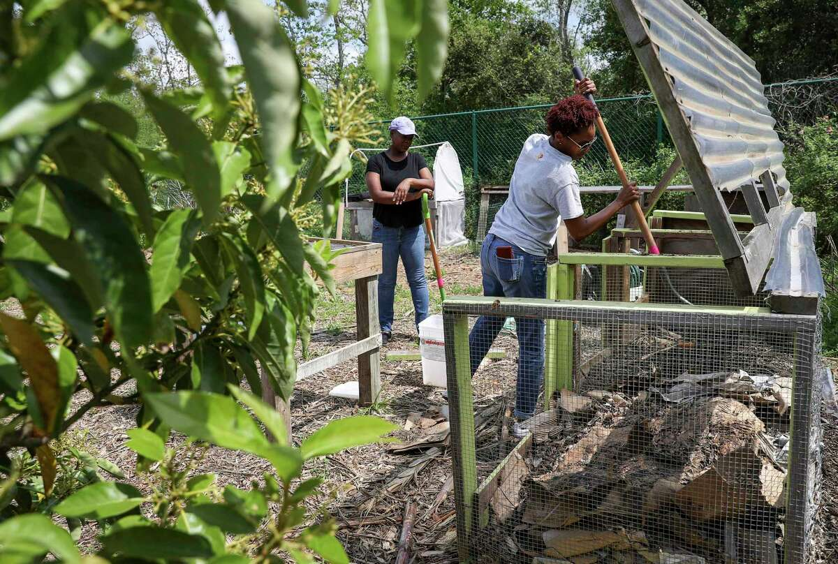 Karena Poke, founder of the Lettuce Live urban farm project, composts food from her kitchen as Beatrice Brown, left, watches Wednesday, March 18, 2020, at the farm in Missouri City.