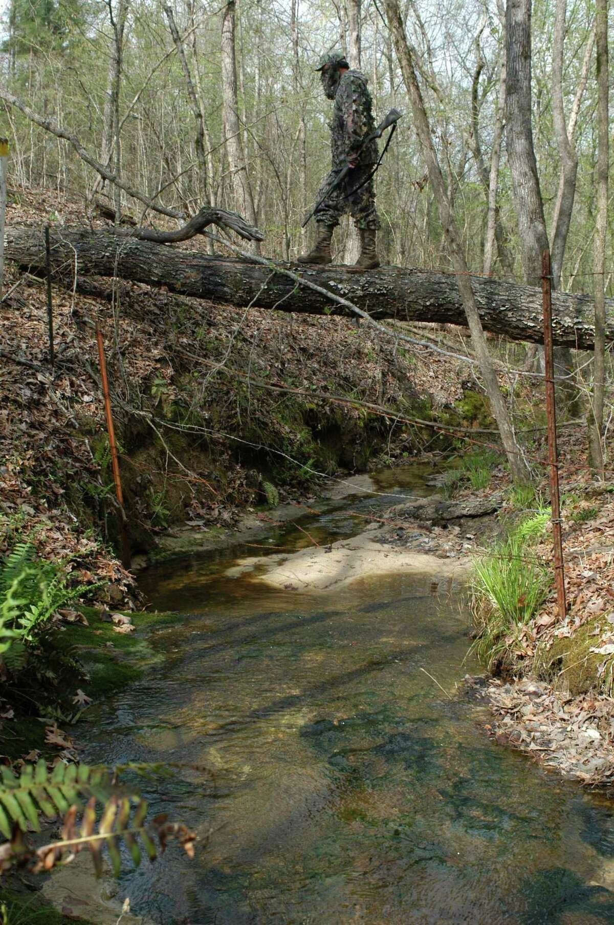 A spring turkey hunter traverses a creek bottom in deep East Texas. One of the cardinal rules of spring hunting is to always set up at location provides an incoming gobbler the path of least resistance. Attempting to call a gobbler across a creek or fence line is likely to be a futile effort. (Photo by Matt Williams)
