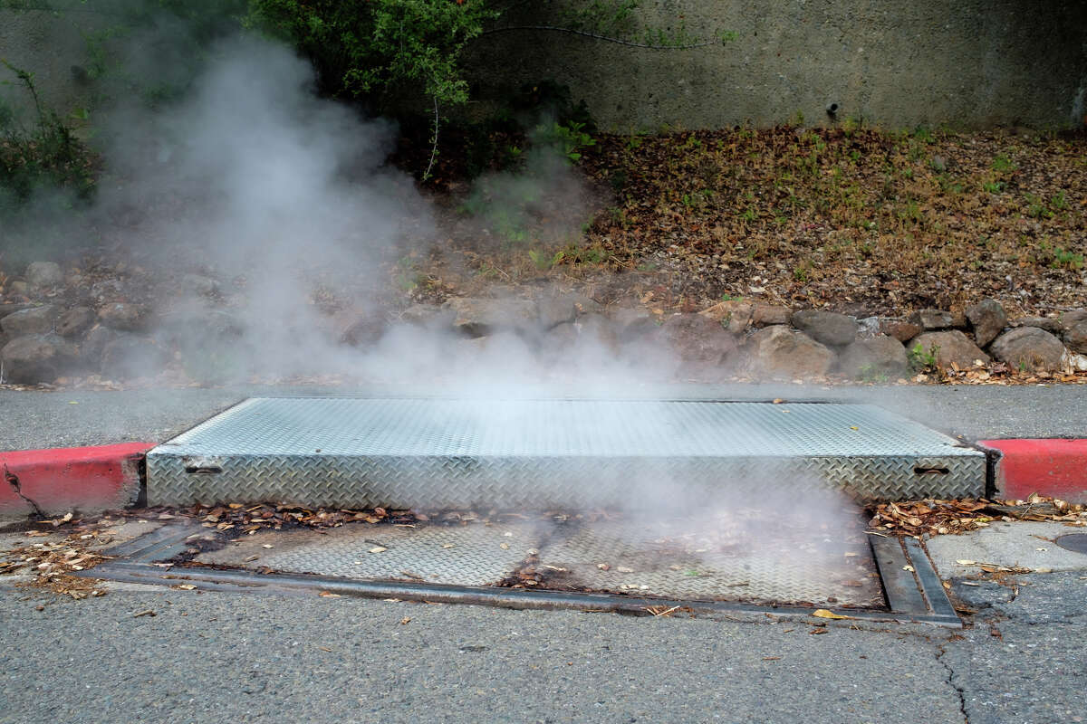 Steam rising from a grate at UC Berkeley campus.