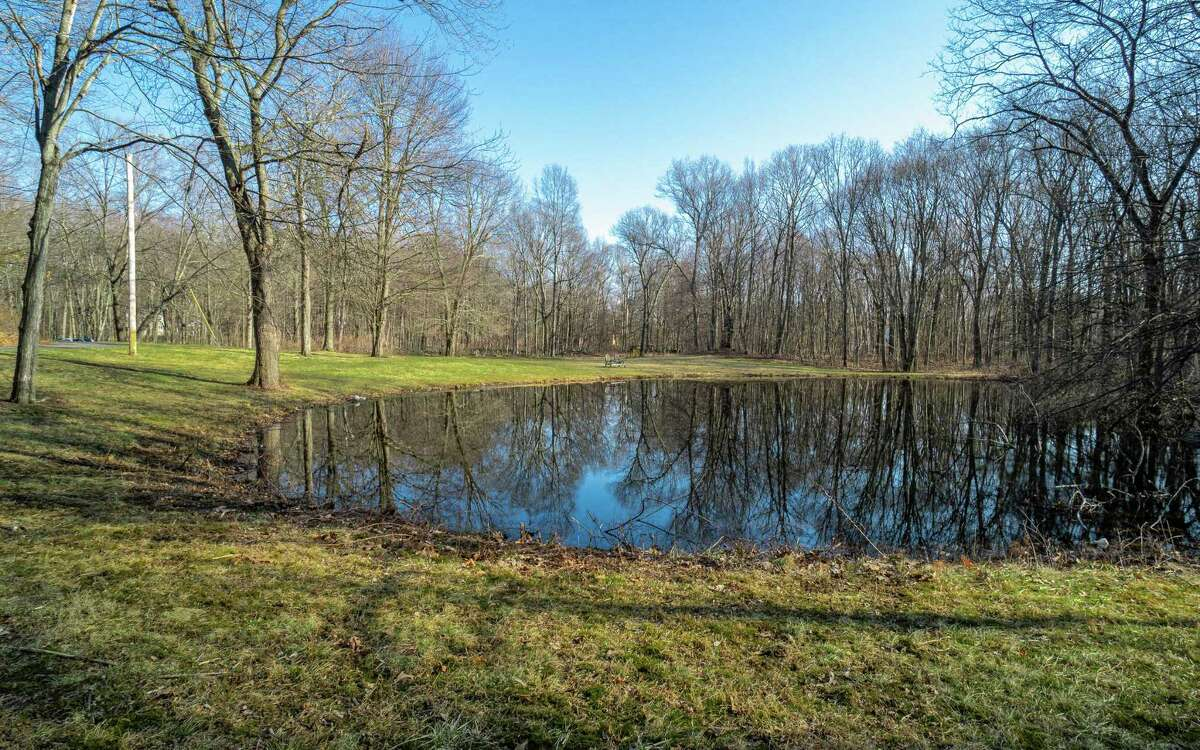 The secluded 6.46-acre level property contains a pond and a barn (not pictured).