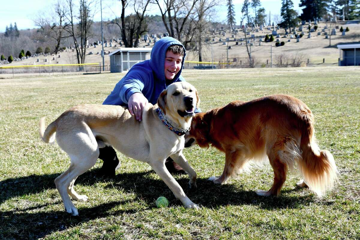 Nicholas Grinvalsky plays with his yellow lab, Tucker and retriever, Samantha, at Rowley Field in Winsted.