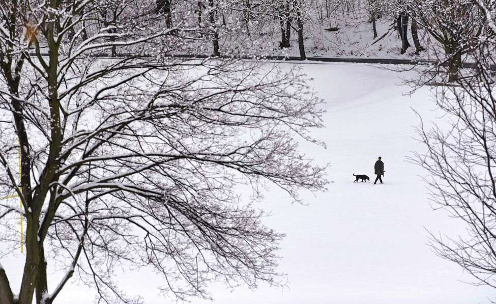 A man walks his dog through Lincoln Park on Tuesday, March 24, 2020, in Albany, N.Y. (Paul Buckowski/Times Union)