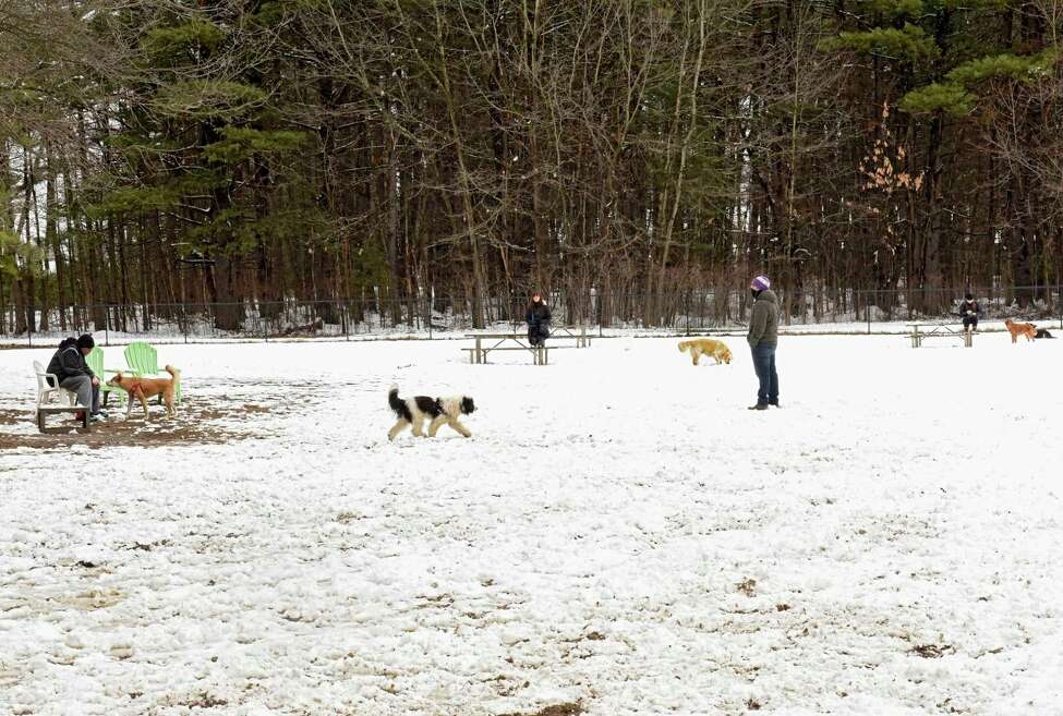 People practice social distancing at a dog park on Tuesday, March 24, 2020 in Saratoga Springs, N.Y (Lori Van Buren/Times Union)