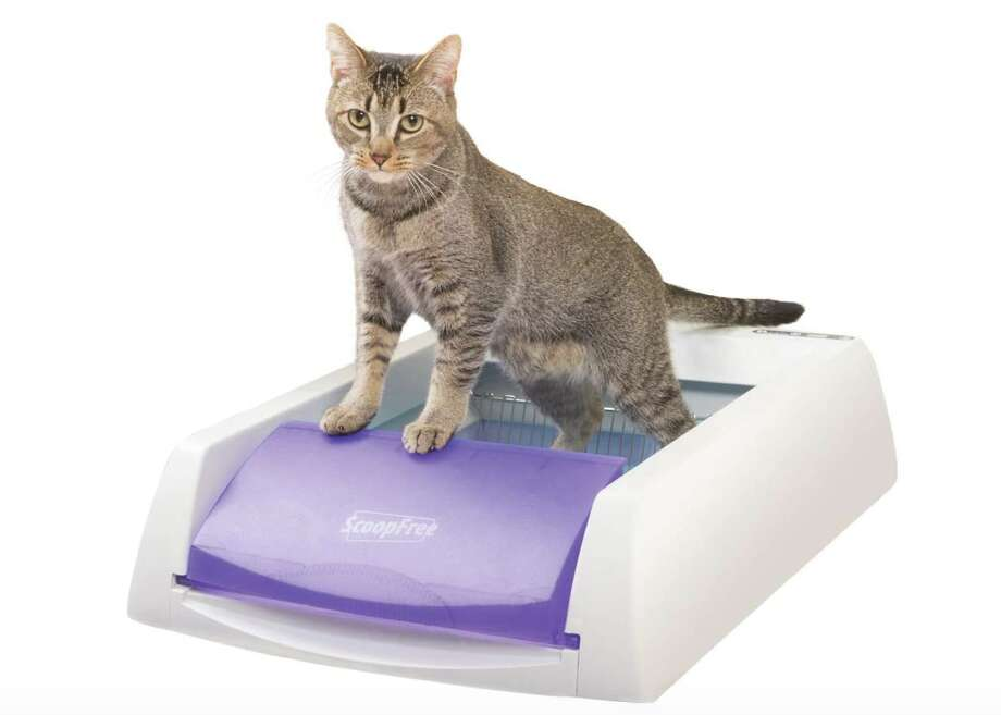 PetSafe ScoopFree Automatic Self-Cleaning Cat Litter Box, $139.95 (On Chewy and Amazon) Photo: Chewy