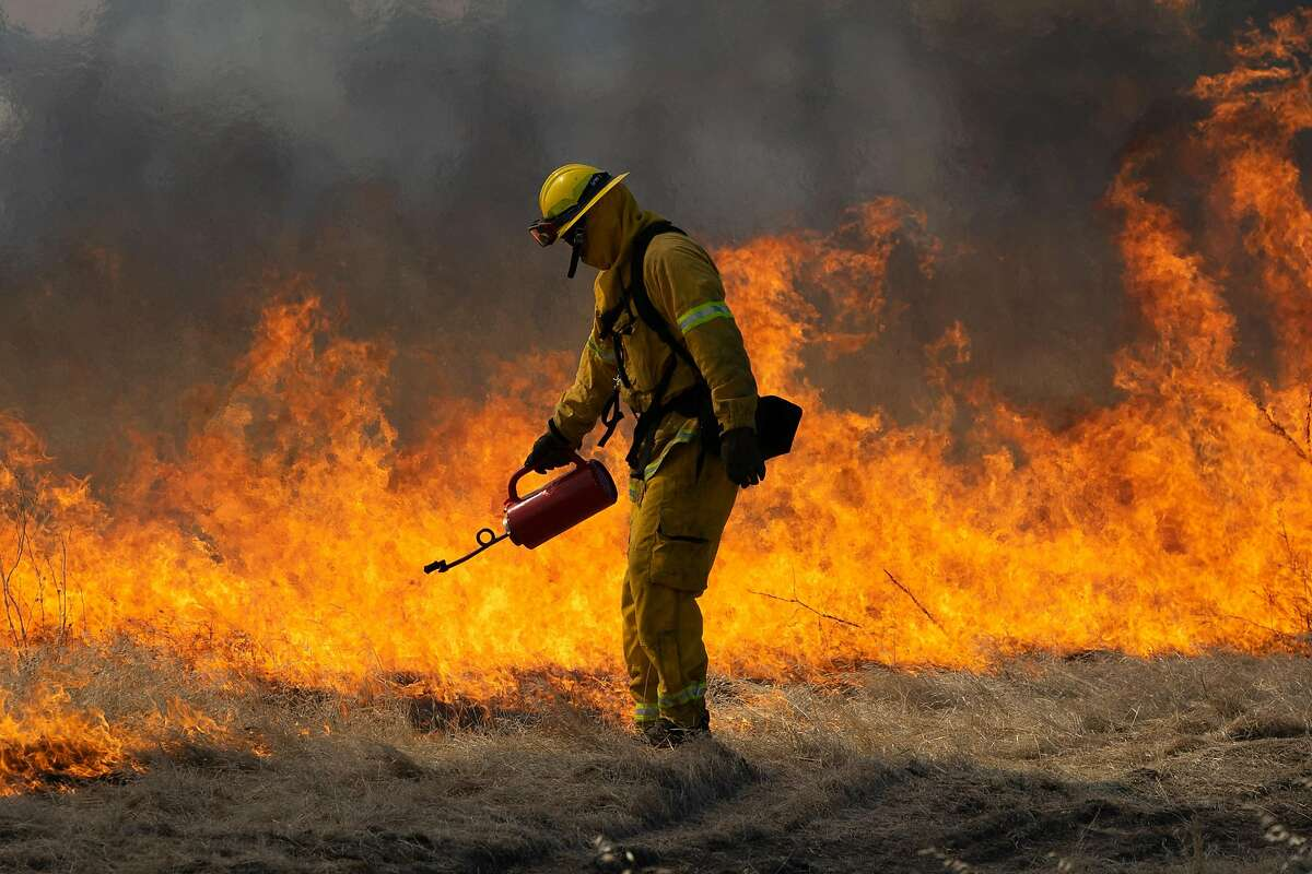 A firefighter uses a torch to start fire during a controlled burn training in Tracy, Calif., on Monday, June 17, 2019.