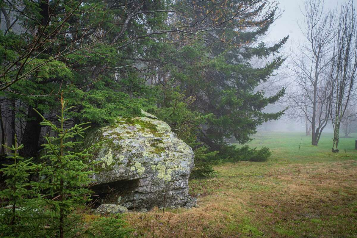 A section of the Mountain Top Arboretum in Tannersville, Greene County. (Photo by Rob Cardillo)