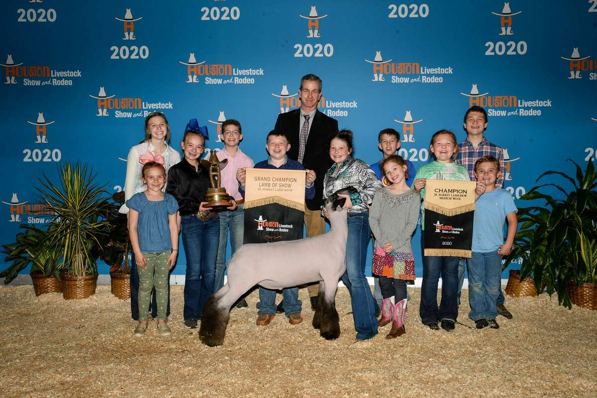 The Grand Champion Lamb from the 2020 Houston Livestock Show and Rodeo