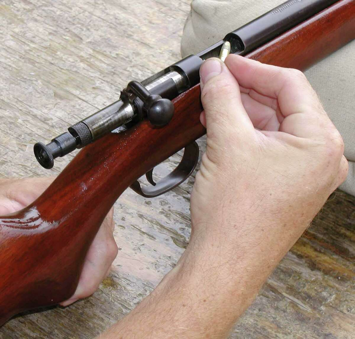 A .22 long rifle may be small, but it is stilll potent.