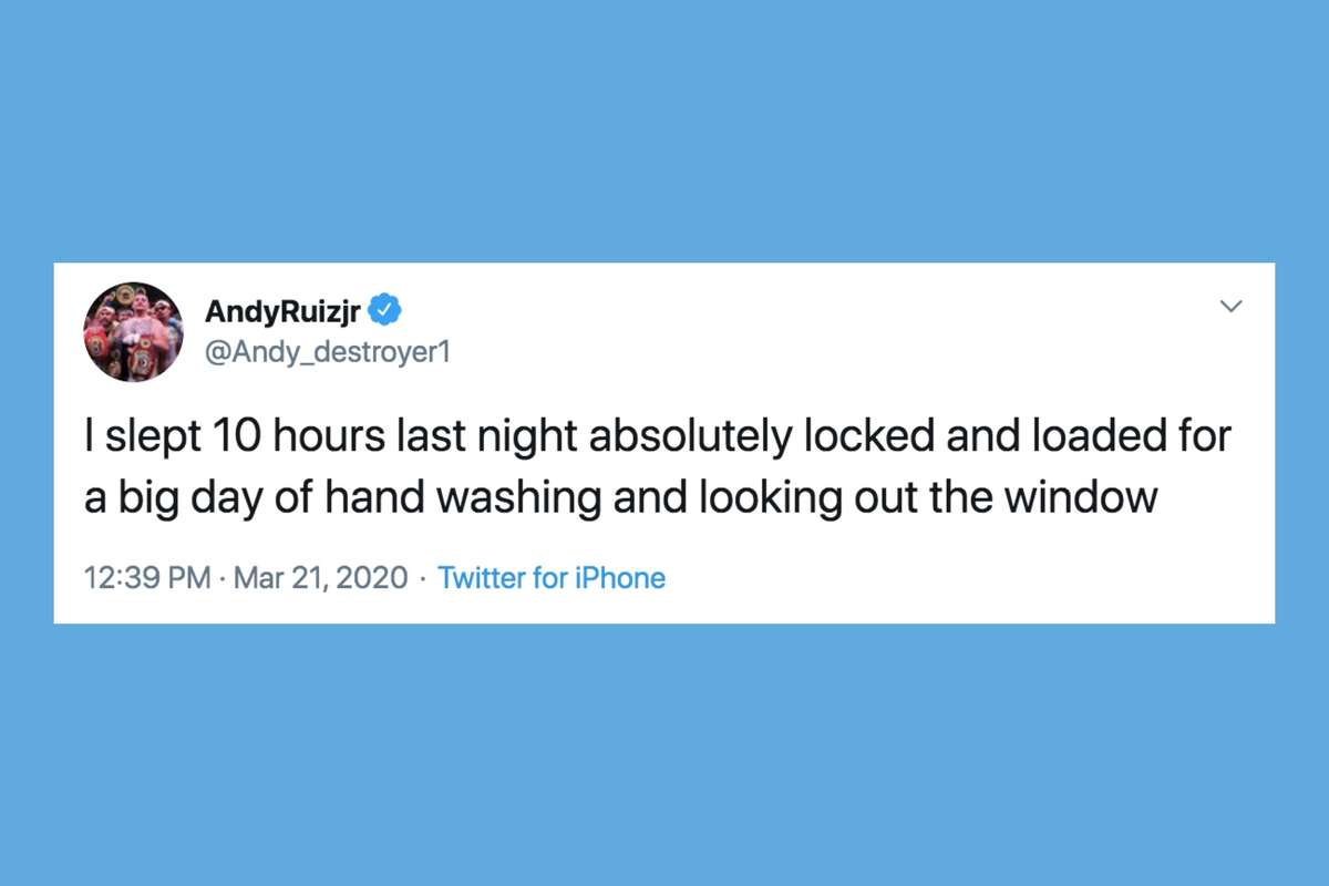 Feeling stressed while quarantining at home? These relevant memes and tweets might help.
