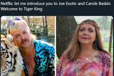 """Fans of the Netflix true crime doc """"Tiger King,"""" starring Joe Exotic, took to social media to share their thoughts on the wild series in the form of hilarious memes."""