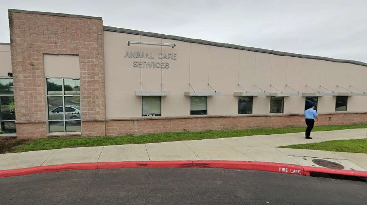 As of Wednesday, ACS has stopped the public intake of dogs and cats at its campus at 4710 State Highway 151 due to the