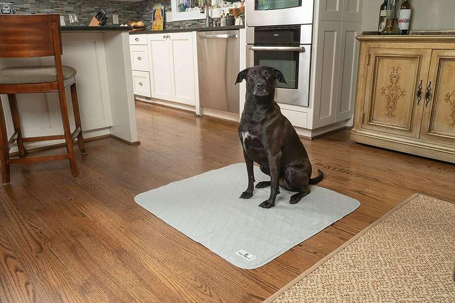 Pet Parents Pawtect Pads Tampons Lavables pour Chien Pee - Paquet de 2, à partir de 15 $ Photo: Amazon