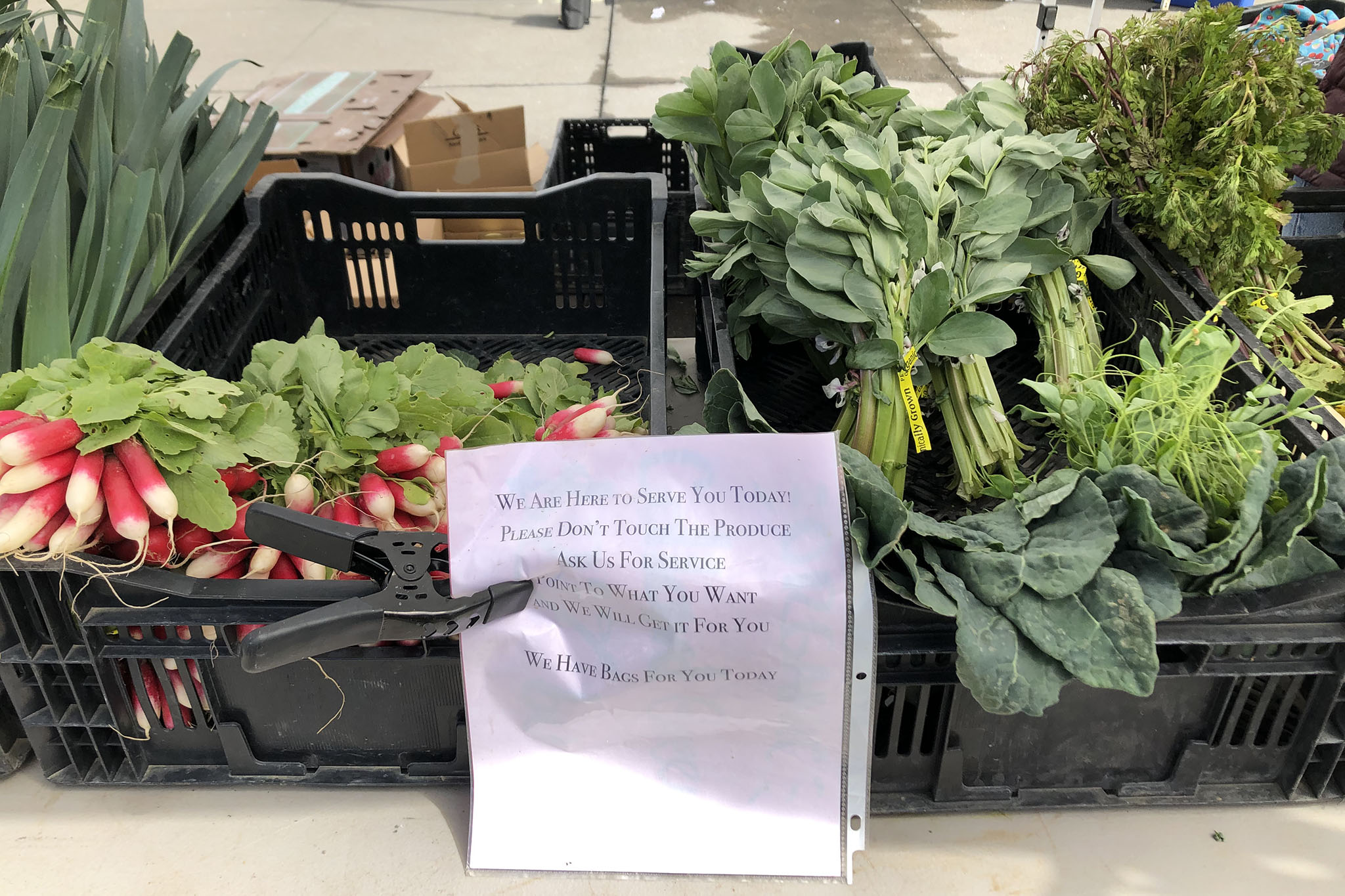 Skip grocery stores for calmer, socially-distant farmers markets
