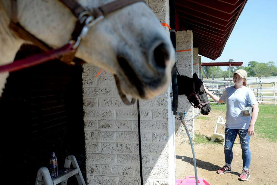 A woman pets one of the horses at Tyrrell Park Stables Thursday. Photo taken Thursday, March 26, 2020 Kim Brent/The Enterprise Photo: Kim Brent/The Enterprise