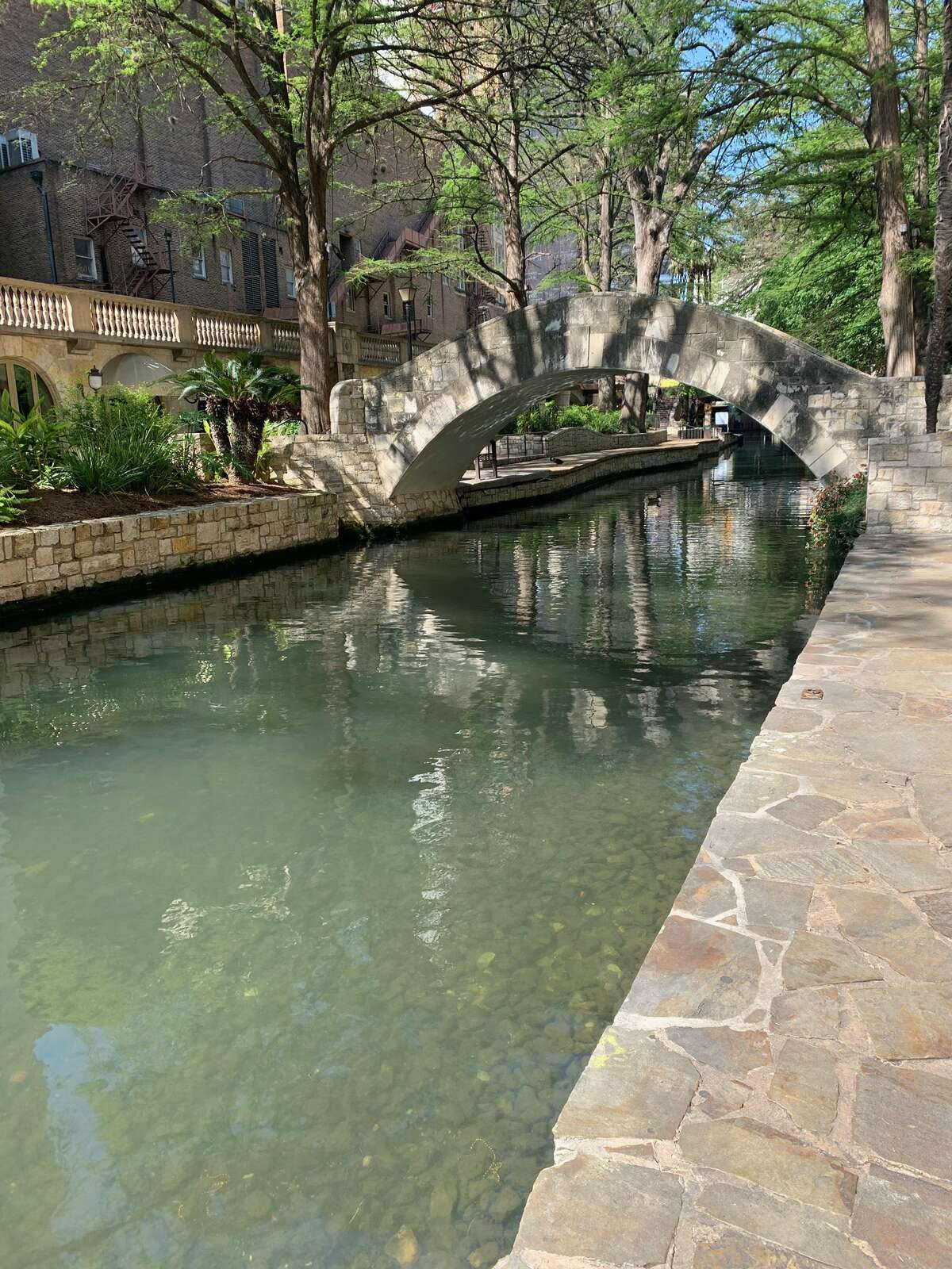 Twitter user @rdrunner, or Ulises, is familiar with what the San Antonio River usually looks like because it's his usual jogging trail. His Wednesday morning visit, exempt in the stay at home orders, stopped him in his tracks. The water, which is usually murky and the butt of jokes by people like Mark Cuban, was unclouded on San Antonio's first day under the Stay Home Work Safe mandate.