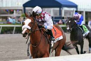 In this image provided by Gulfstream Park, Tiz the Law, riddren by Manuel Franco, wins the Florida Derby horse race at Gulfstream Park, Saturday, March 28, 2020, in Hallandale Beach, Fla.