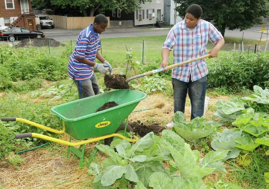 Akil Hamilton, 17, and  Dedree Clarke, 15, spread compost. (Luanne M. Ferris / Times Union) Photo: Luanne M. Ferris